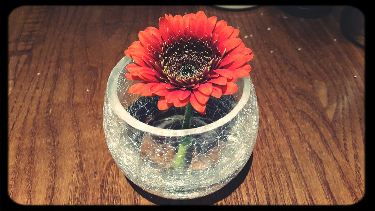 Flower Decoration On The Table Reddish