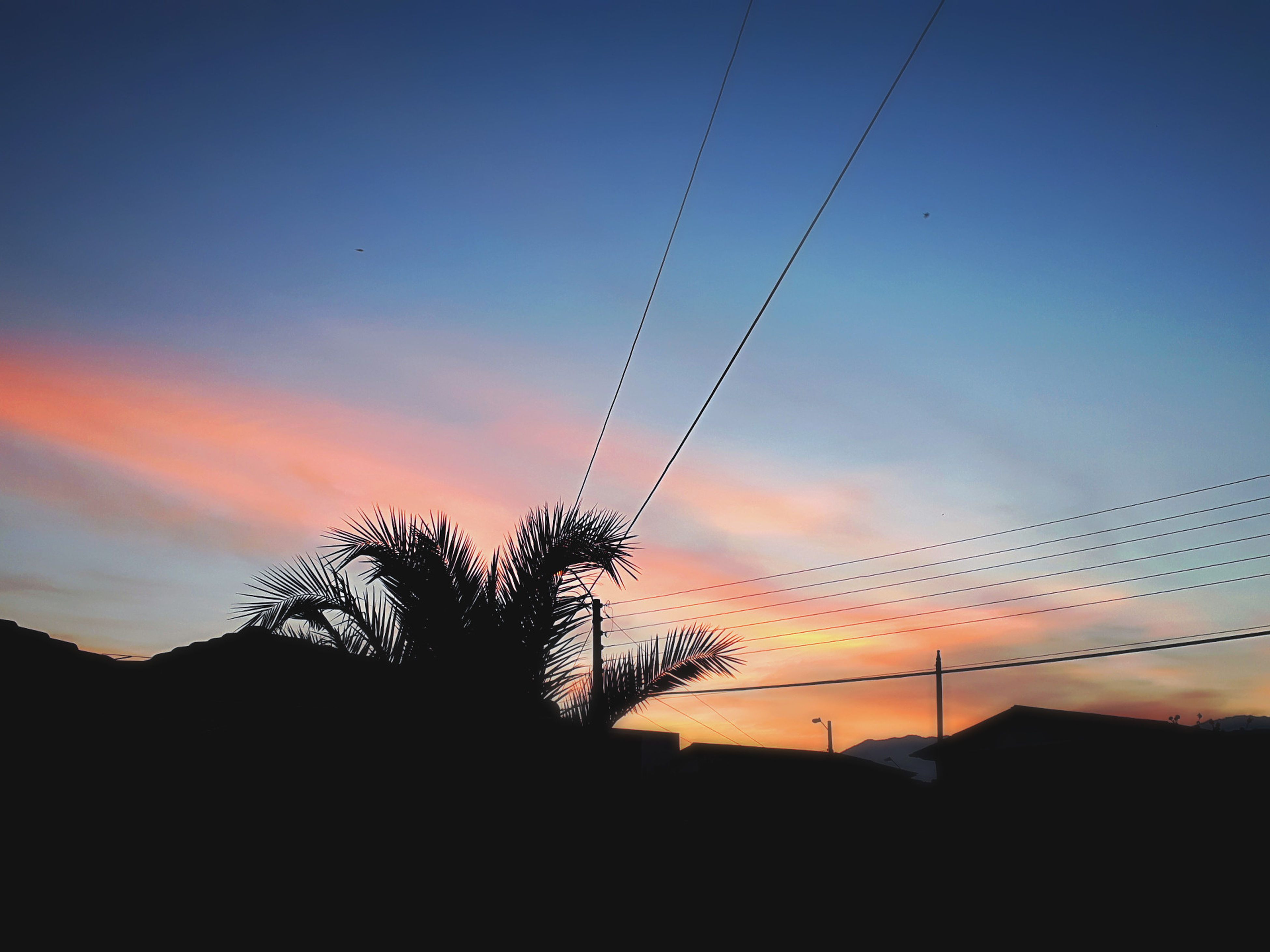 sunset, silhouette, tranquil scene, nature, scenics, sky, beauty in nature, cable, tranquility, no people, tree, outdoors, landscape, low angle view, day