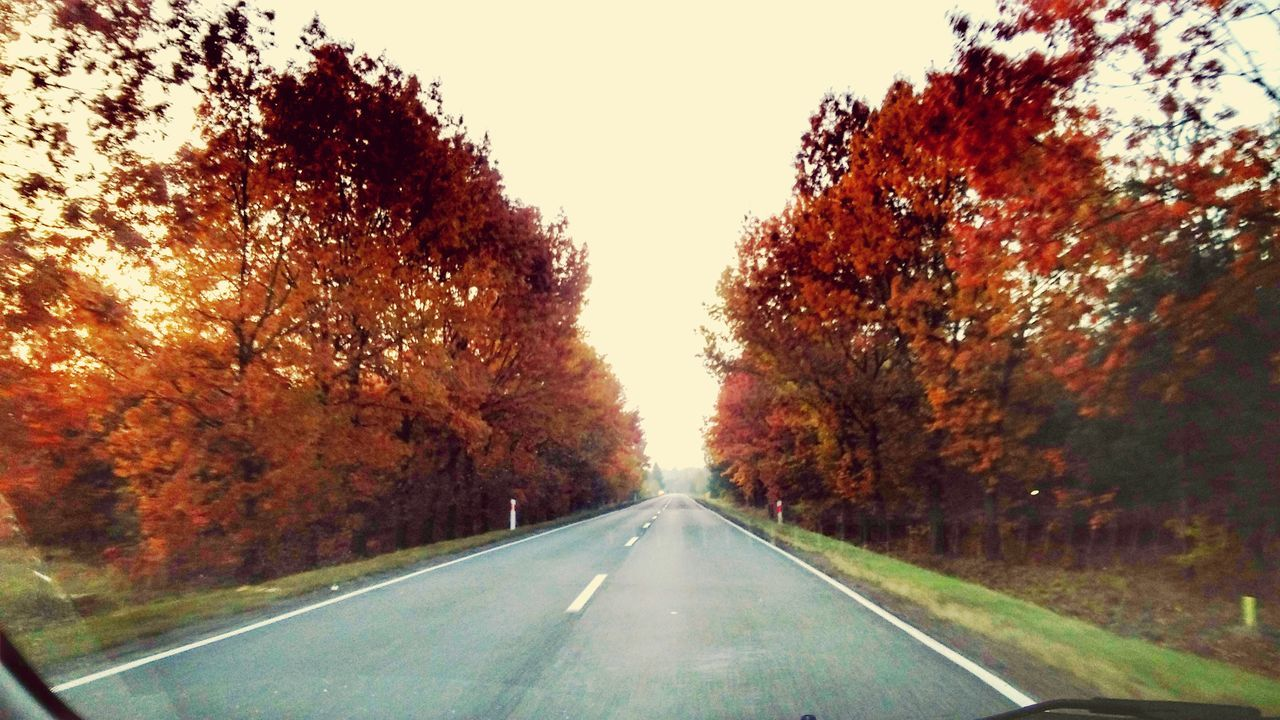 Road Transportation Day Sky Asphalt On The Way To Work Green Autumn Colors Colors Autumn Scenics No People