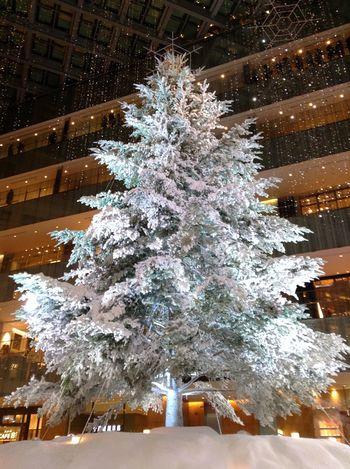 Merry Christmas! Lightup Christmas Tree IPod Touch