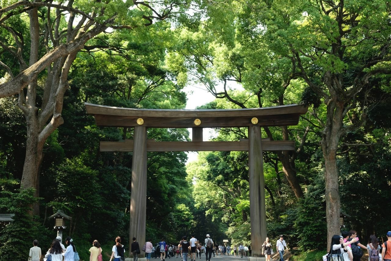 明治神宮 Meiji jingu Shrine Japan Tokyo