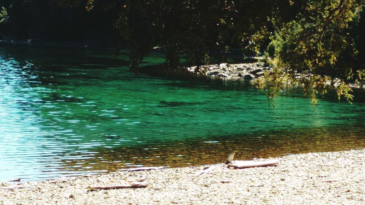 Lago Menendez Lago Agua Cristalina Pura en el Parque Nacional Los Alerces