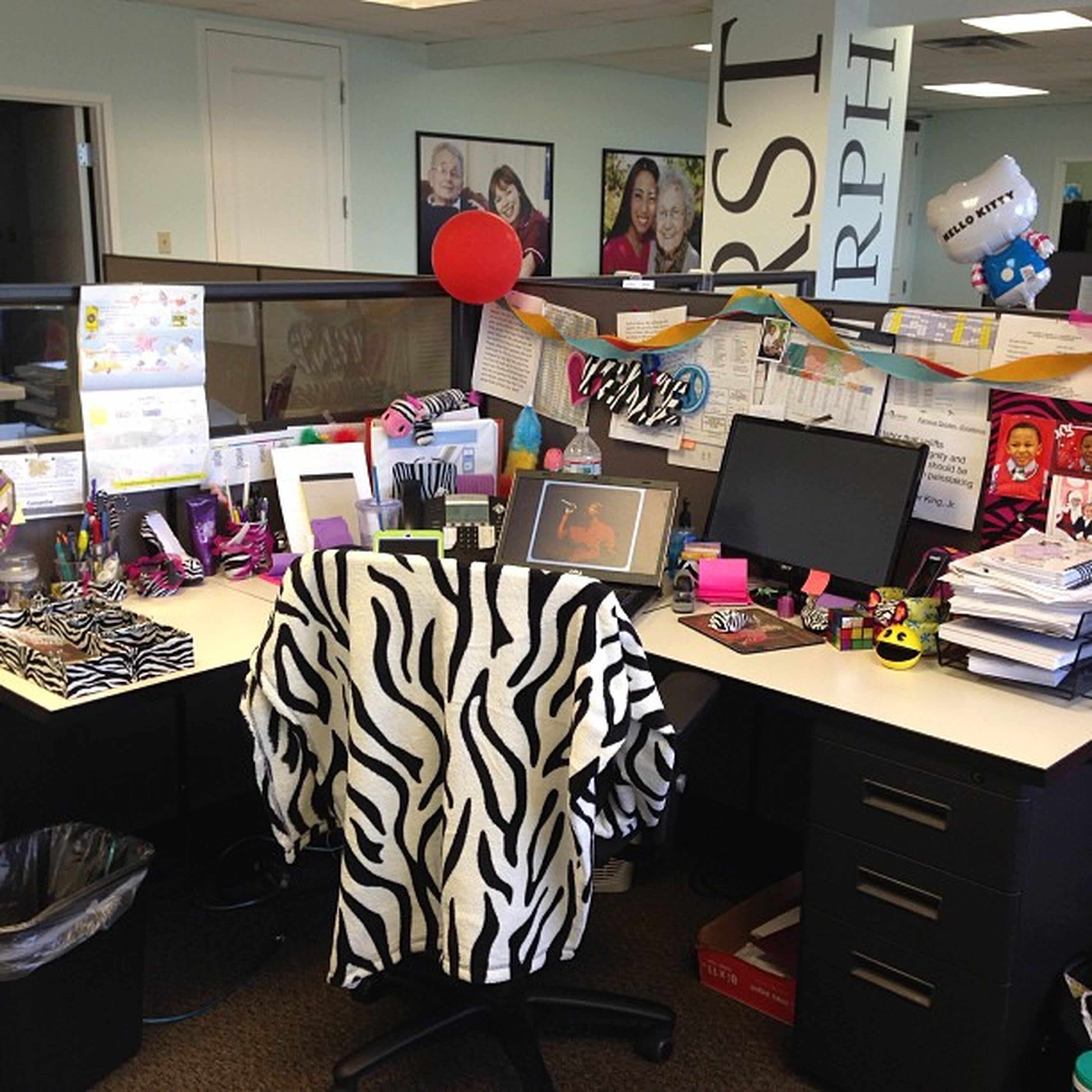 I love zebra