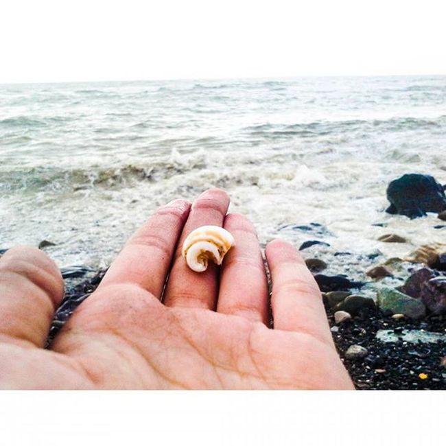 Be grateful ! Sea Sea View Seashells Seashell Waves Ocean MalabarHill Malabarhills Things2doinmumbai Mumbaiinstagrammers Instagram 📷❤♥👌✌👍😍😘💕👣