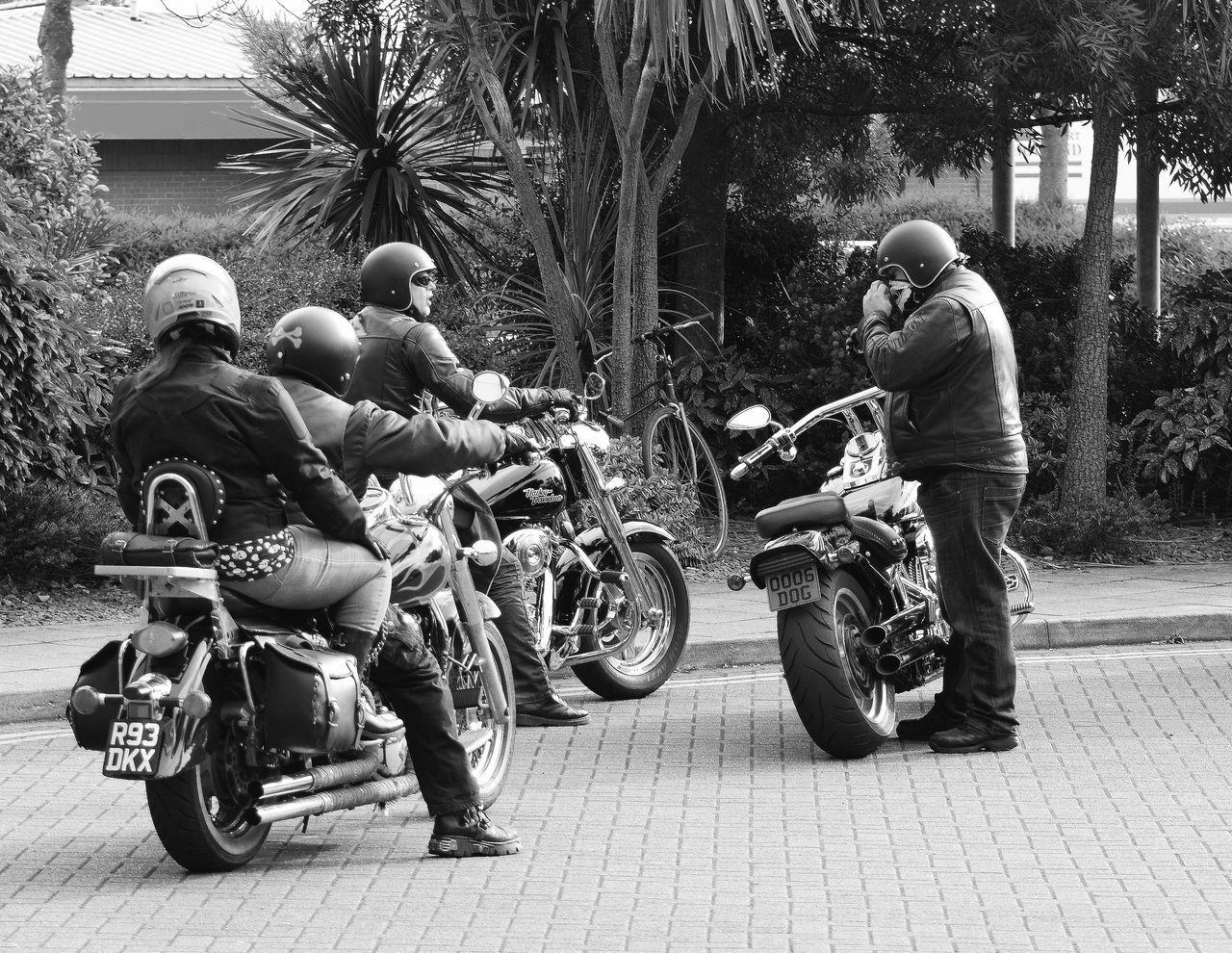 Resist Motorcycle Helmet Tree Crash Helmet Transportation Men Headwear Road Outdoors People Adult Day Adults Only Motorcycle Racing Hells Angels