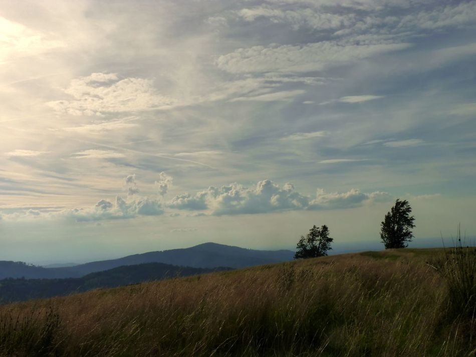 Beauty In Nature Beskid Capture The Moment Cloud - Sky Exceptional Photographs Eye4photography  EyeEm Gallery EyeEm Nature Lover From My Point Of View From Where I Stand Getting Inspired Kotarz Landscape Mountain Nature Outdoors Poland Sky