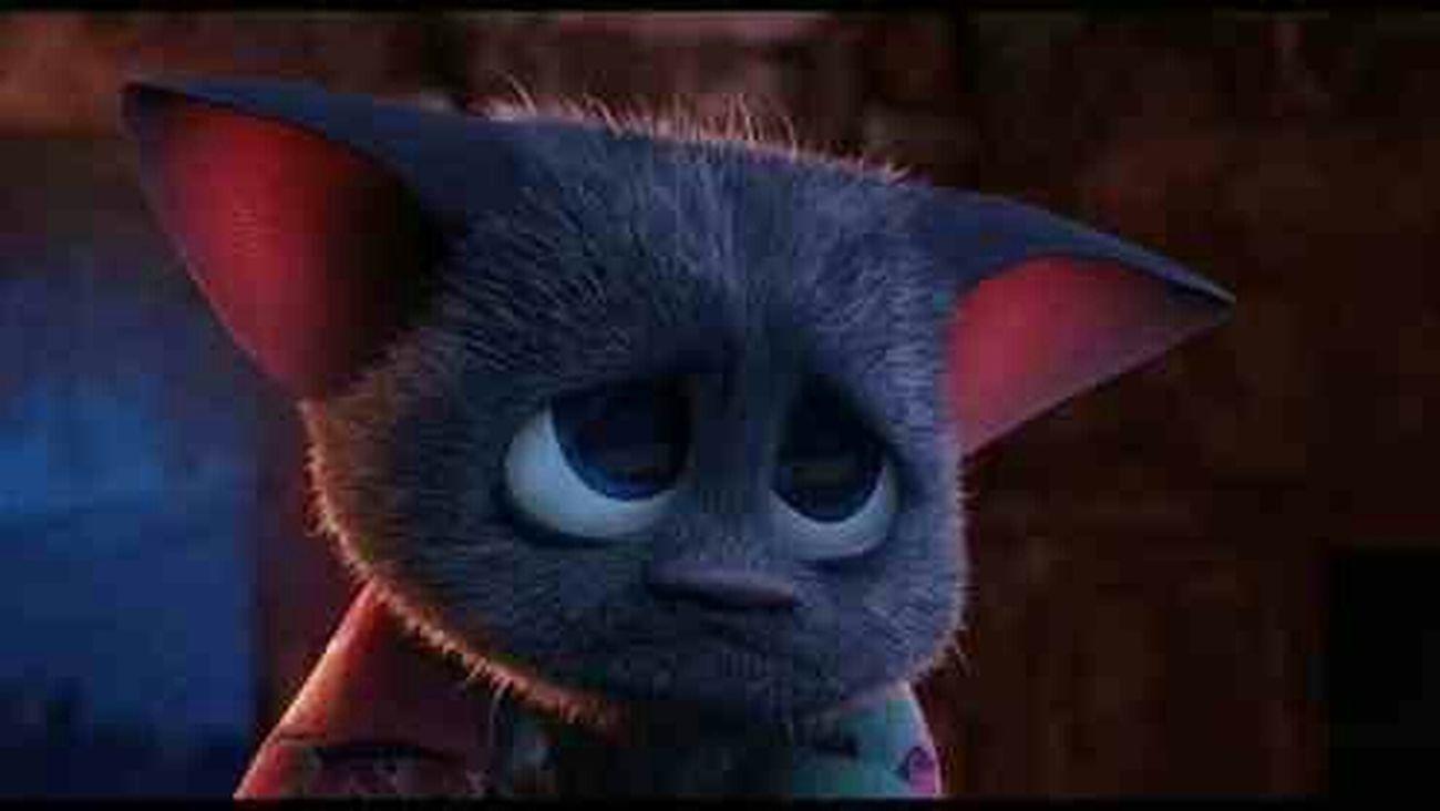 no no nonono don't give me the pouty bat face!