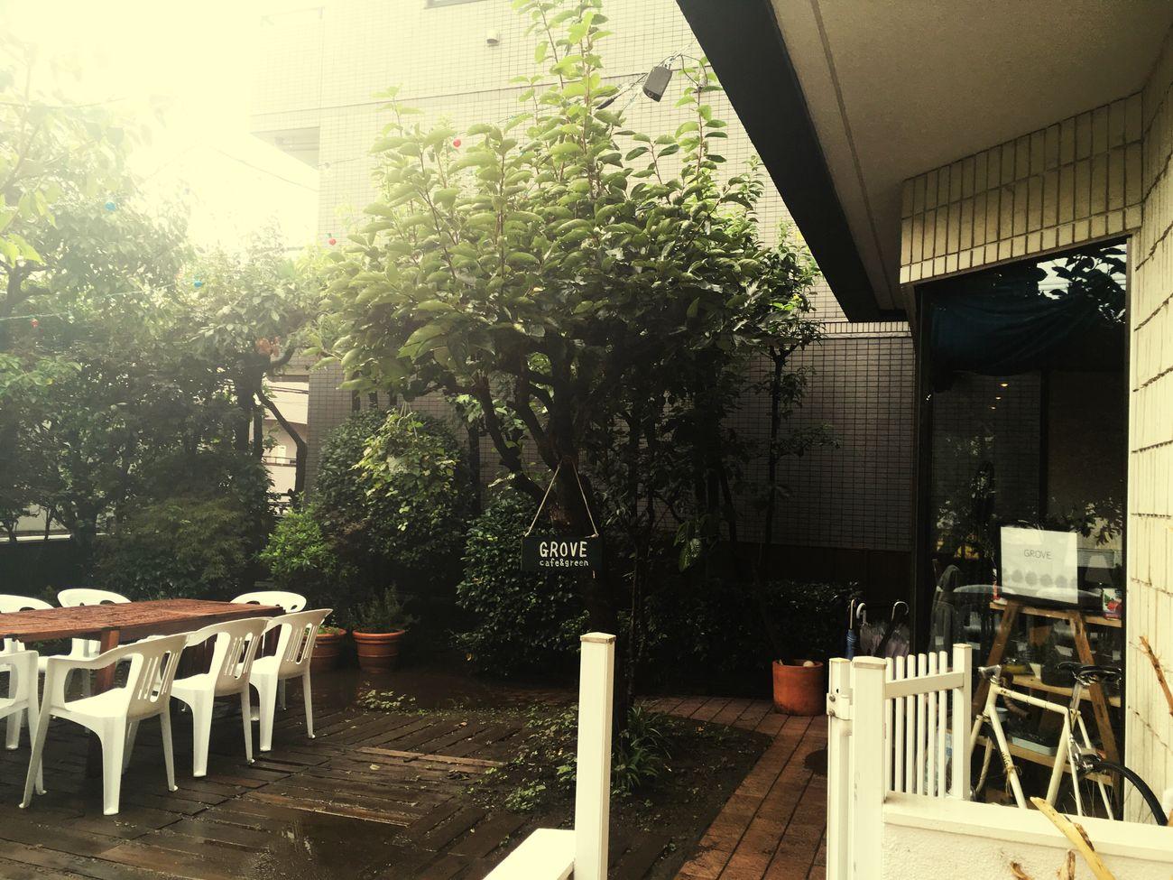Cafe Globe 大井町