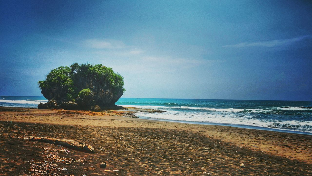 .. lil' jungle on a beach .. Sea Beach Horizon Over Water Nature Beauty In Nature Sky Sand Water Blue Outdoors No People Tree Sonyalpha Sonyimages Sonyphotography Sonya58 Sonyindonesia Sonyimages📷 Huaweip9lite Lights Blue Skies