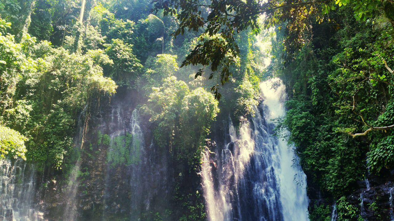 Tinago falls in Iligan Tinago Falls Tropical Paradise Tropical Rainforest Asian  Jungle Nature Tropics Tropical Waterfall Beautiful