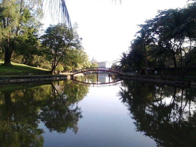 Borneo Sarawak Malaysia Morningjog Greenery Scenery Love Life The Human Condition Earth