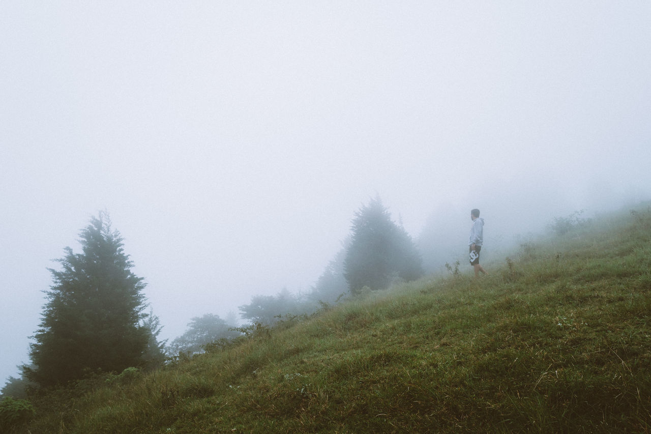 Beauty In Nature Cold Temperature Fog Forest Green Landscape Low Angle View Nature One Person Scenics Tranquility Tree