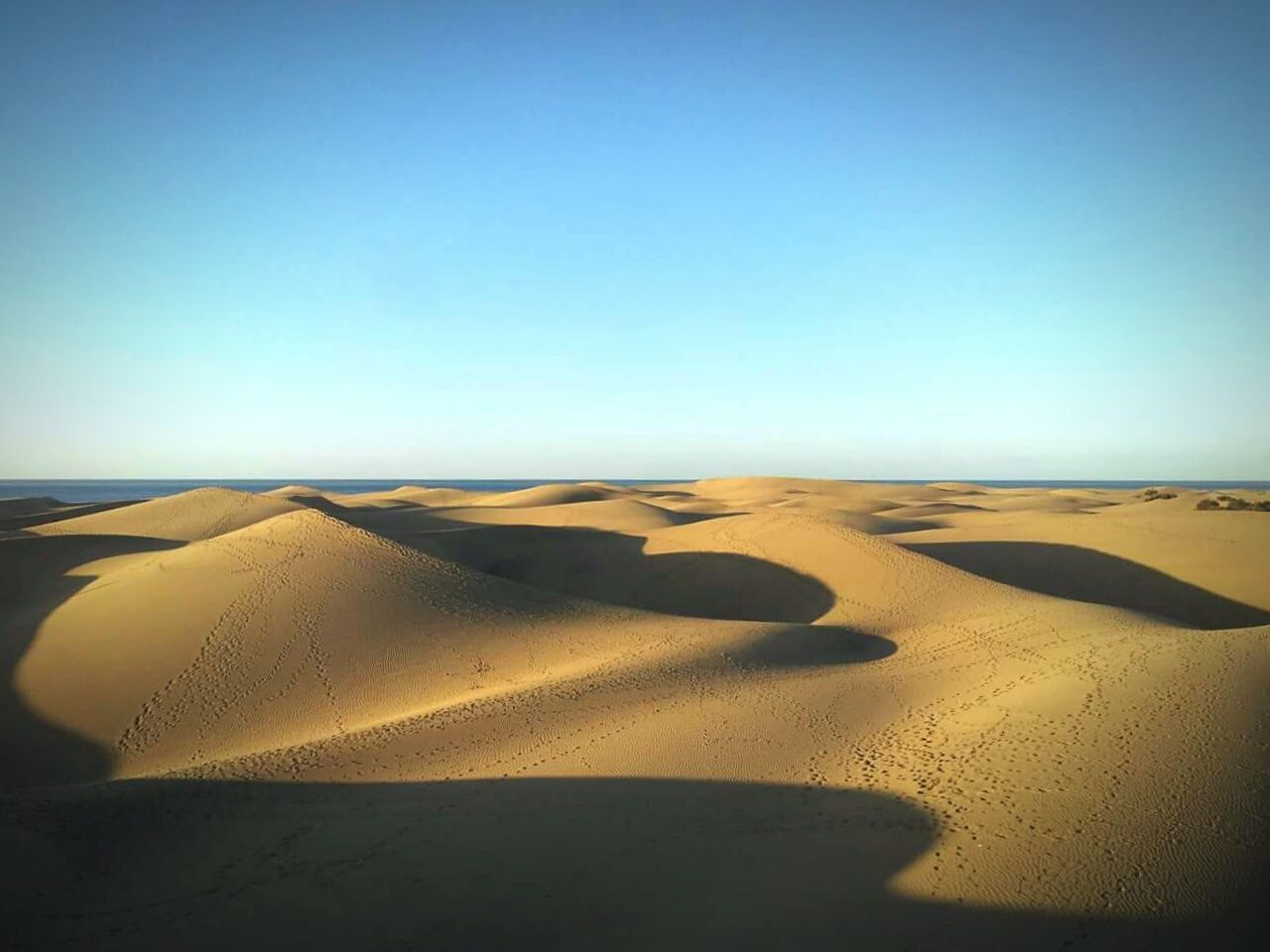 Dunes Sand Dunes Sand Distant Sea Blue Sky Golden Sand Gran Canaria First Eyeem Photo
