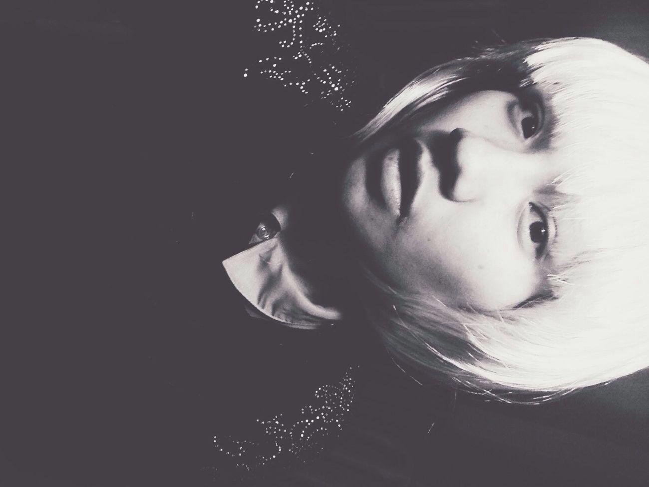Blsckandwhite Portrait Shorthair