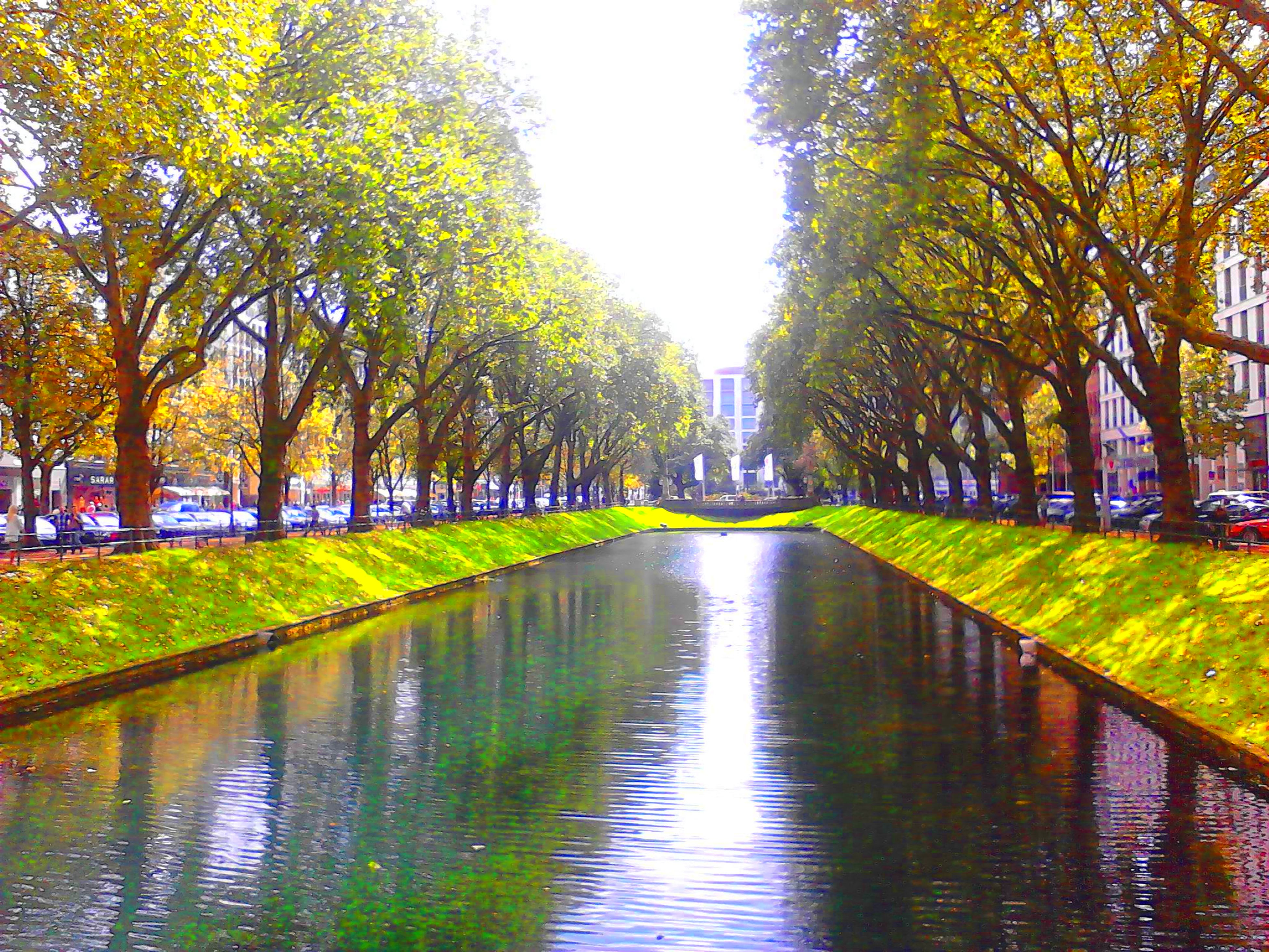 tree, water, canal, green color, park - man made space, tranquility, clear sky, reflection, growth, nature, waterfront, treelined, beauty in nature, diminishing perspective, tranquil scene, sunlight, branch, grass, incidental people, scenics