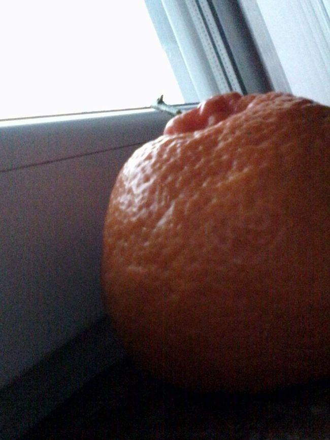 Orange Looking Out Window Wolfzuachis Fruits Fruit Eyeem Market Mandarins Mandarine Clementines Clementine Fructe Fruct