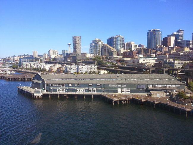 Seattle Skyline, Finest In The 206 Seattle Ferris Wheel Puget Sound, Seattle, WA Seattle Aquarium Fall Is Here. Amazing View Take It All In on Seattle Waterfront