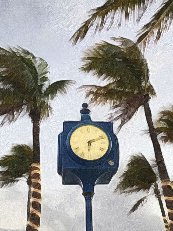 Time/Acrylic on canvas Palm Tree Clock Time Clock Face No People Low Angle View Day Tree Outdoors Minute Hand Close-up Photography To Paint Eyeem Painters Painting EyeEm Fresh On Eyeem  This Week On Eyeem Beauty In Nature Multitalented Time Clock Tower Acrylic Painting Painter - Artist Painters Eyeem Painters