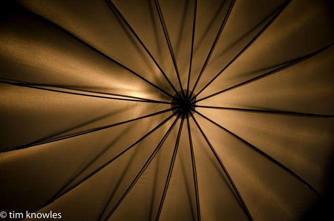 Studio umbrella Umbrellas Studio Photography Strobes Nikon D7000 Canada Coast To Coast In The Studio Contrast EyeEm Best Shots Deceptively Simple NikonLife Pattern, Texture, Shape And Form