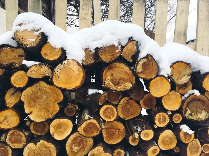 Log Stack Woodpile Timber Snow Heap Winter Cold Temperature No People Environmental Issues Forestry Industry Deforestation Outdoors Day Close-up Nature