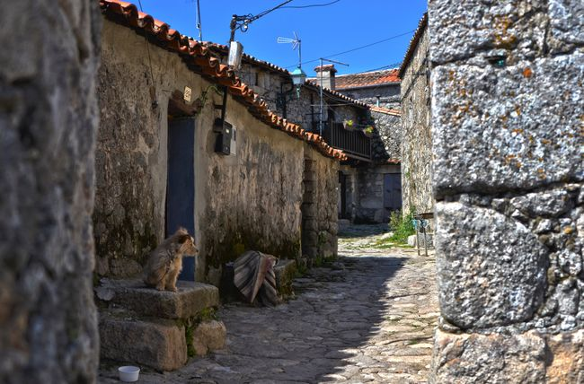 Dog waiting Taking Photos Enjoying Life Extremadura Life Photo SPAIN Eye4photography  Dog Streetphotography Street Photography Village Landscape Landscape_Collection Rocks Old EyeEm Best Shots EyeEm Gallery EyeEm Best Edits HDR Hdr_Collection