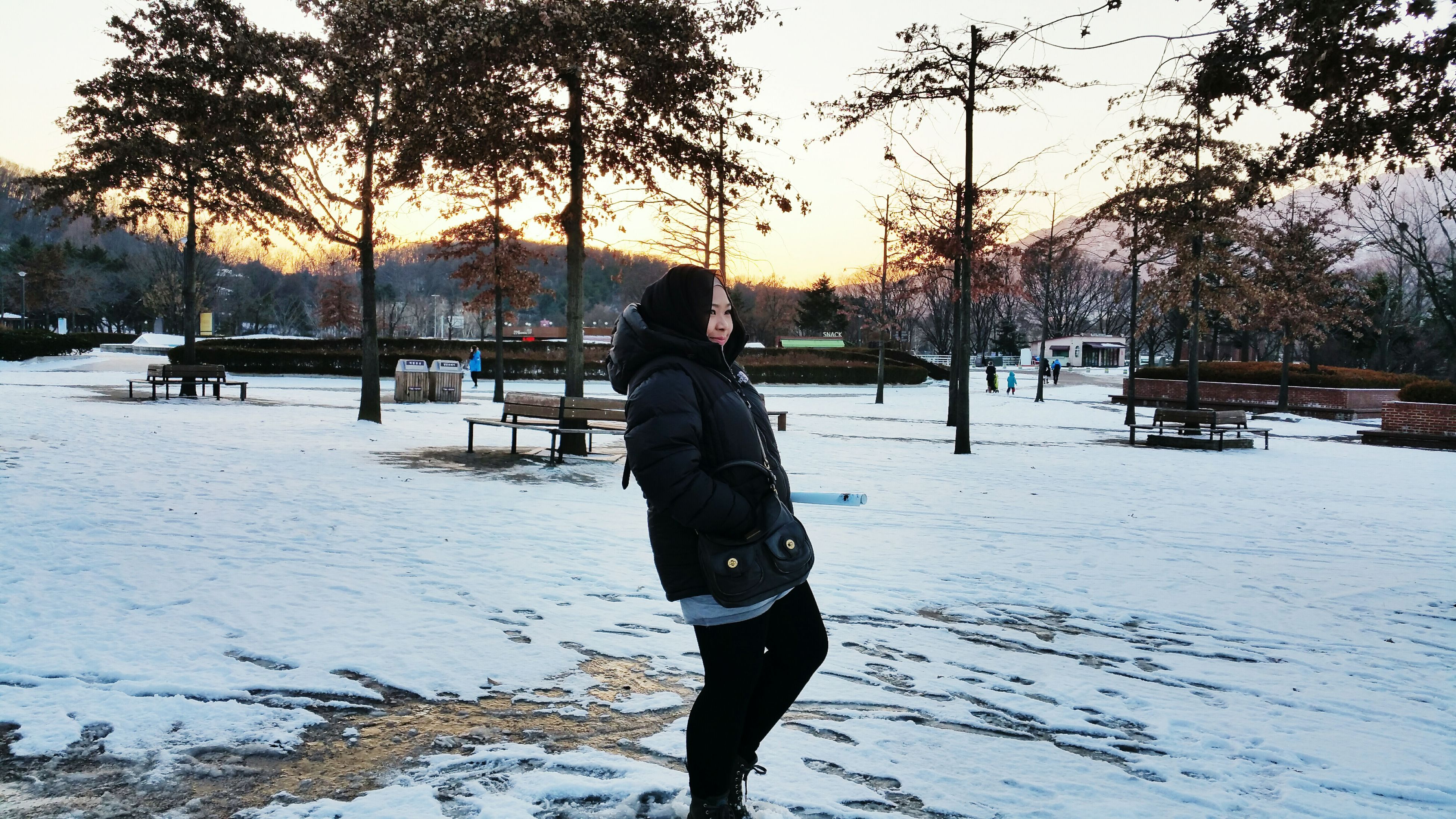 snow, winter, cold temperature, season, weather, lifestyles, rear view, leisure activity, frozen, tree, sunset, warm clothing, covering, standing, full length, men, nature, walking