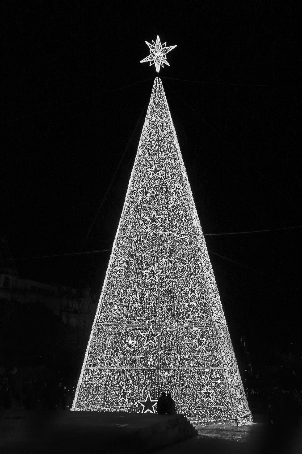 Christmas 2016 Christmas Around The World Christmas At Porto Christmas Lights Christmas Tree No People Porto Portugal Xmas Xmas At Porto Xmas Tree