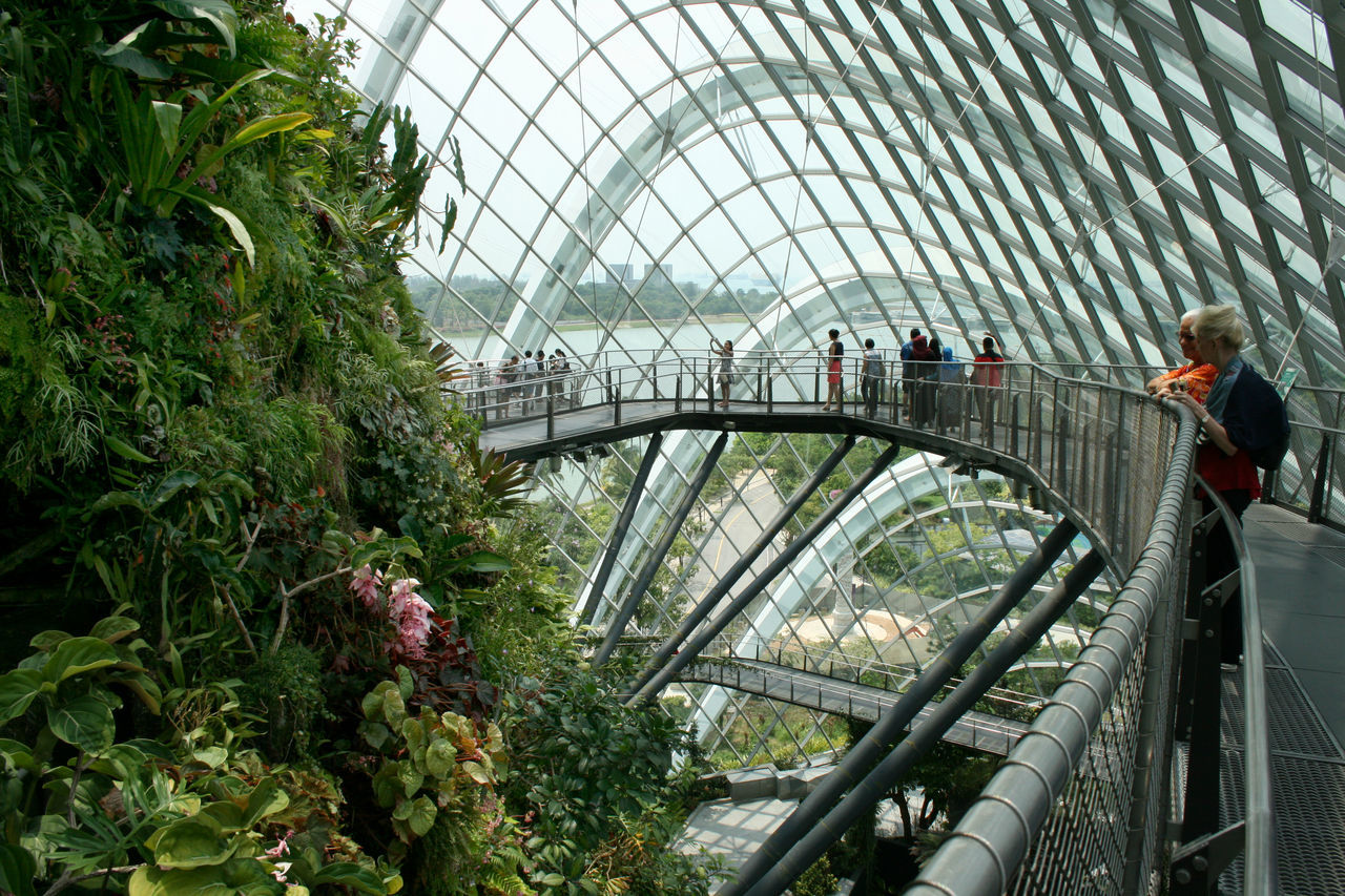 Cloud Garden, Singapore Architecture City Cloud Garden CloudForest Futuristic Greenhouse Modern People Plants Singapore Travel Destinations
