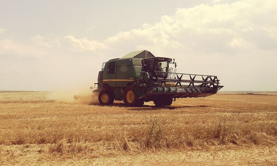 Cosecha Campo Tractor Trigo Cebada Trabajo Pueblo Cielo поле пшеница