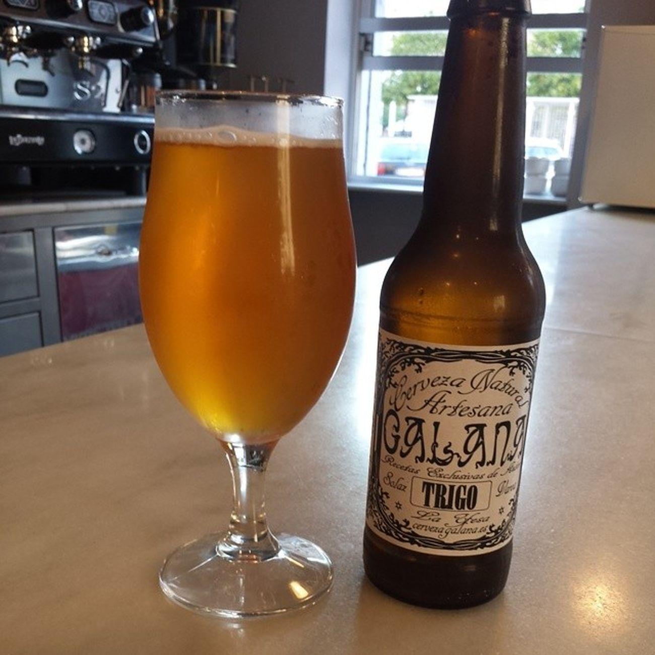 Cerveza natural artesana Galana de trigo