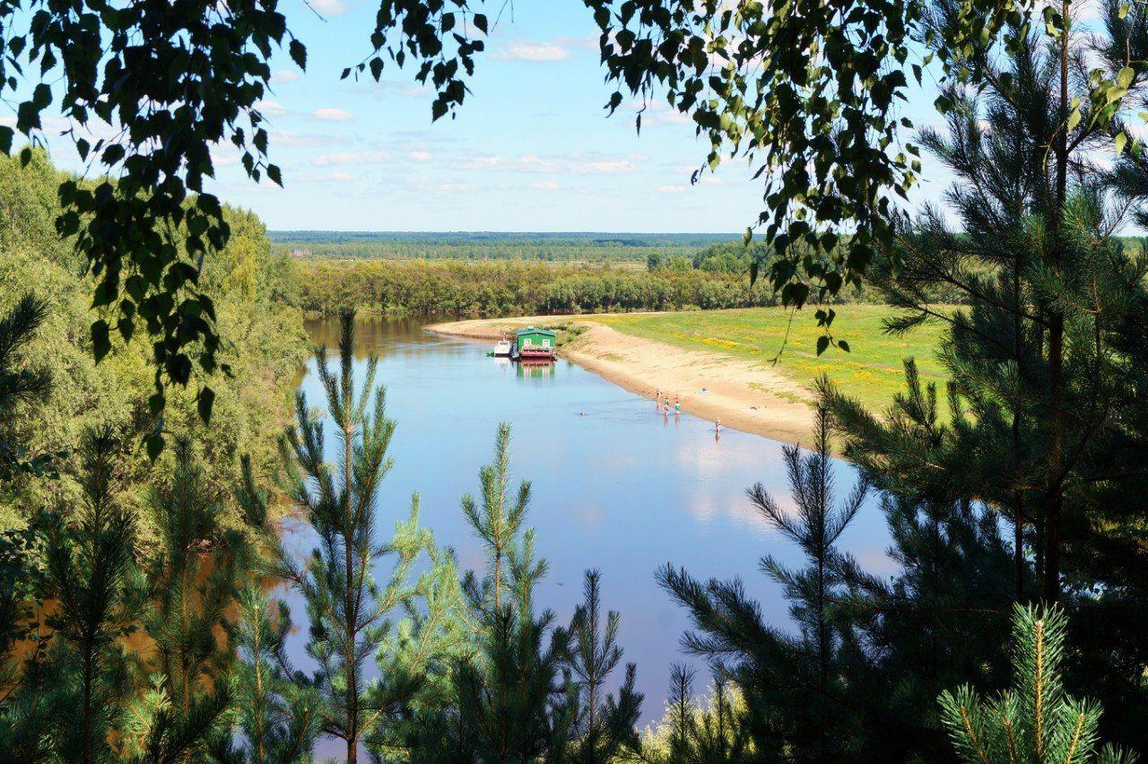 River Tara Beauty In Nature Growth Nature River River Tara Summer Summer ☀ Tree Water