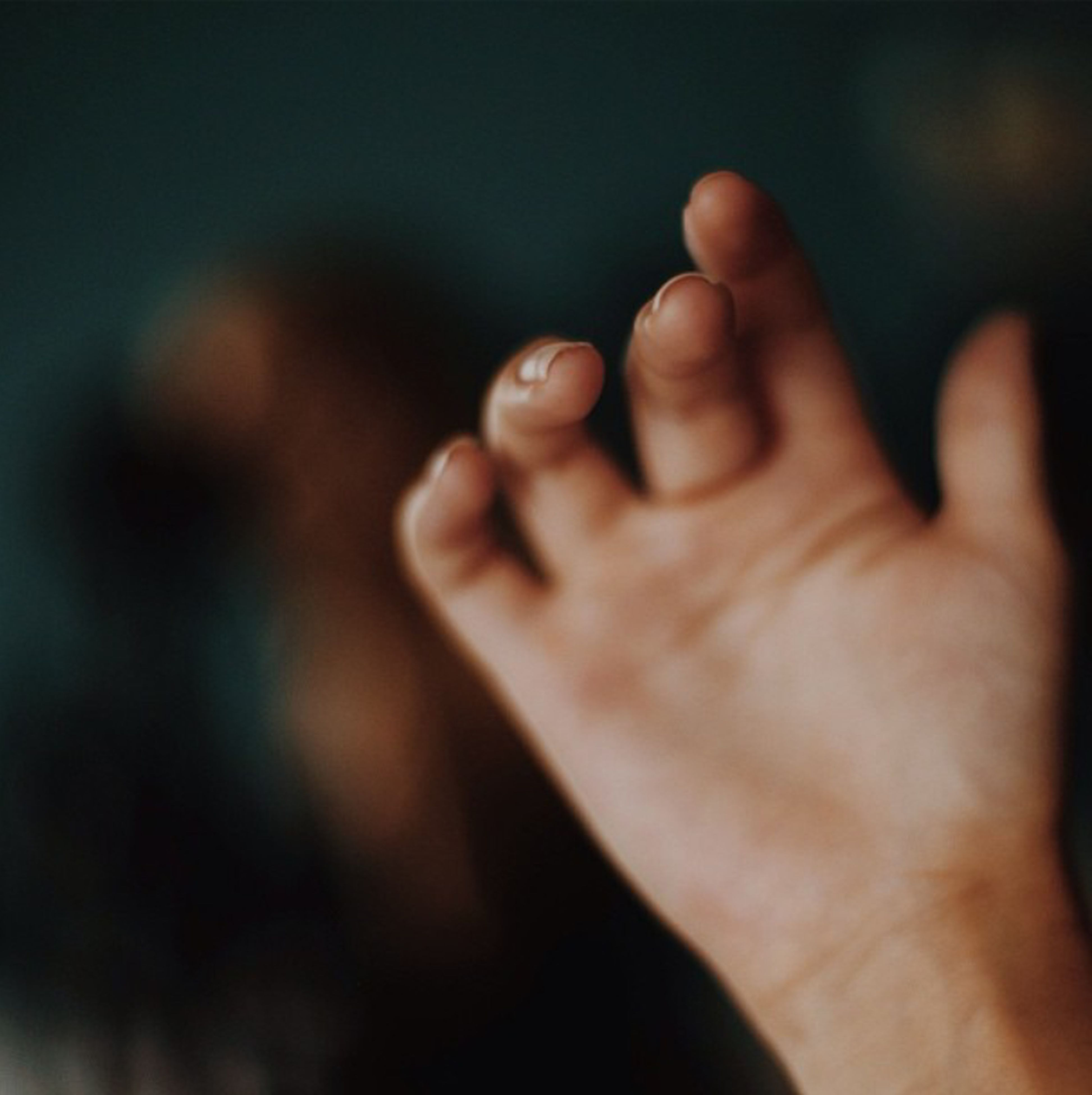 person, part of, lifestyles, human finger, close-up, selective focus, focus on foreground, cropped, leisure activity, unrecognizable person, holding, indoors, barefoot, human skin, men, love