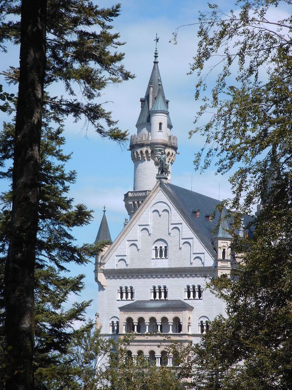 Neuschwanstein Castle peeking through the Trees Architecture Branch Building Exterior Built Structure Day Disney Castle Historical Historical Building Historical Buildings Historical Monuments Historical Place Historical Sights Hohenschwangau King Ludwig II König Ludwig II Low Angle View Nature Neuschwanstein Neuschwanstein Castle Neuschwanstein Schloss No People Outdoors Schloss Neuschwanstein Sky Tree