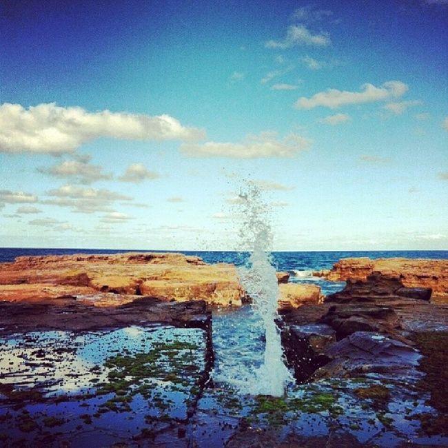 Water Sea Pacifik Australia sunny ilovethis tagsforlikes like