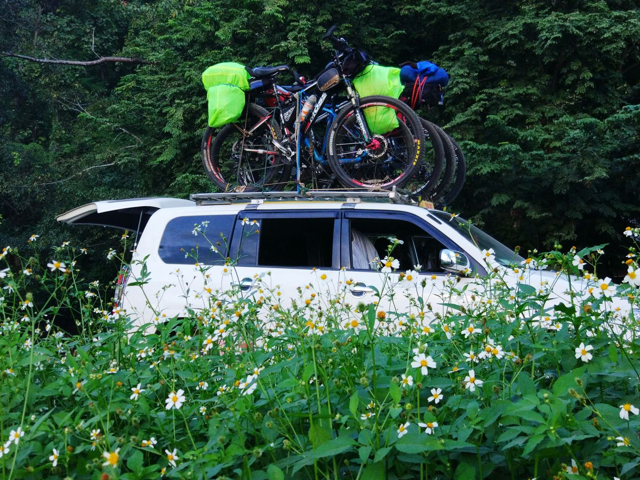 Land Vehicle Mode Of Transport Outdoors Bikes Biketour Biketrip