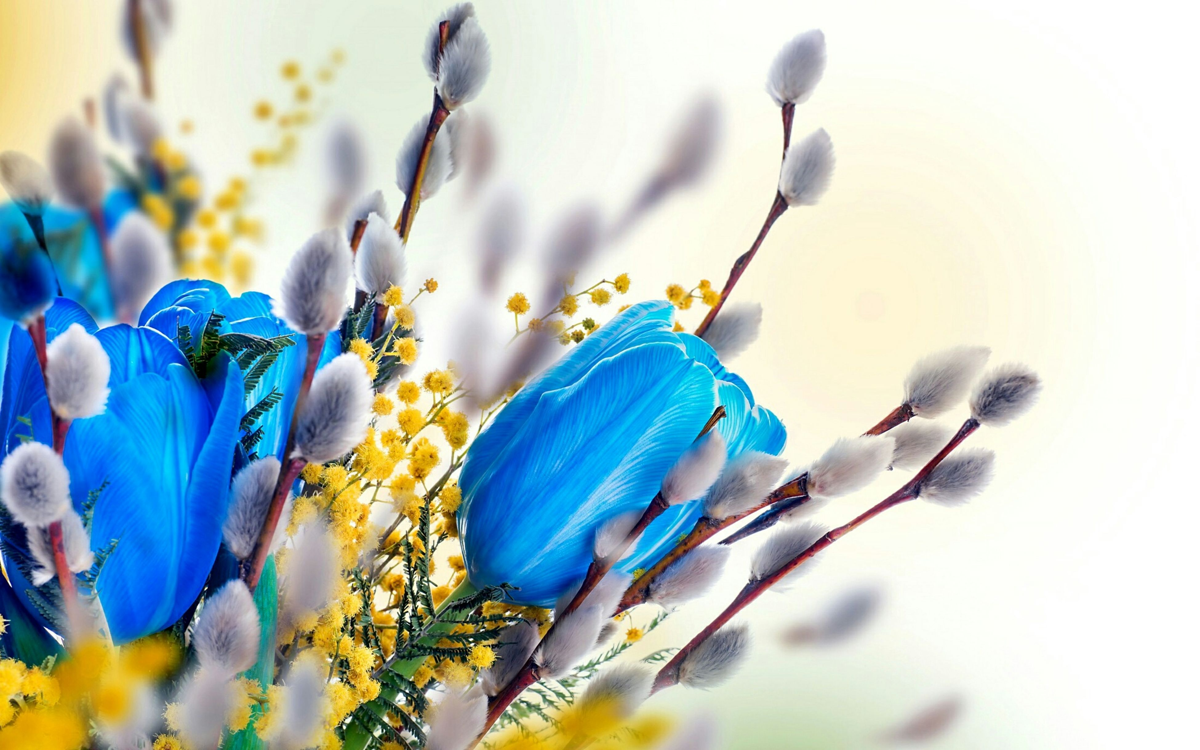 flower, fragility, purple, petal, blue, freshness, close-up, focus on foreground, beauty in nature, flower head, growth, nature, selective focus, plant, blooming, stem, no people, yellow, day, outdoors