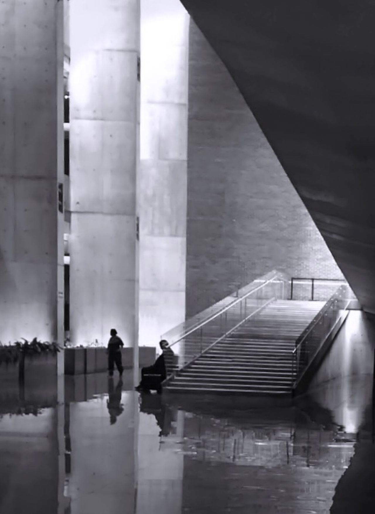 351 / 366 Architectural Column Architectural Feature Architecture Black & White Black And White Blackandwhite Building Built Structure Columns Corridor Illuminated Leading Lines Leisure Activity Modern Pabellon M PabellonM Reflection Senseofscale Silohuette Stairs Landaarquitectos Agustinlanda Agustin Landa