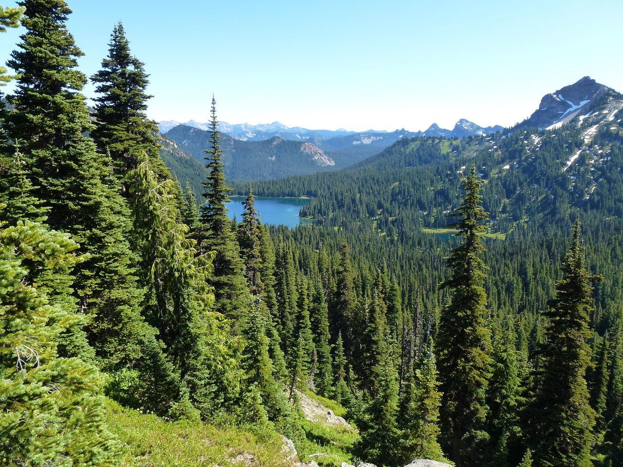 Naches Peak Trail Mt Rainier