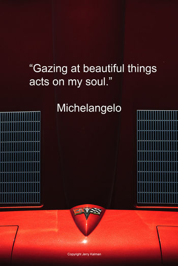Today is #FallbrookVintageCarShow day. Shot of Corvette hood and quote by Michelangelo in this #Quotograph anchors the idea Antique Car Corvette Fallbrook Fallbrook, CA Michelangelo Pala Mesa Resort Vintage Car Show