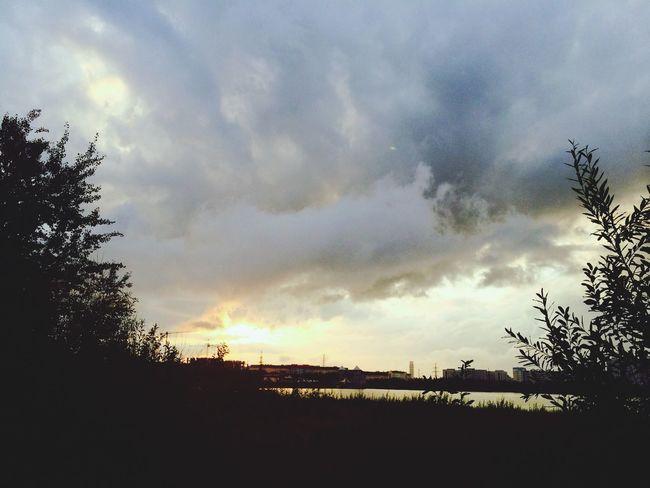 Из меня, конечно ужасный фотограф. Но все же это небо я не могла не снять☁️ After The Rain Summertime Sky Check This Out