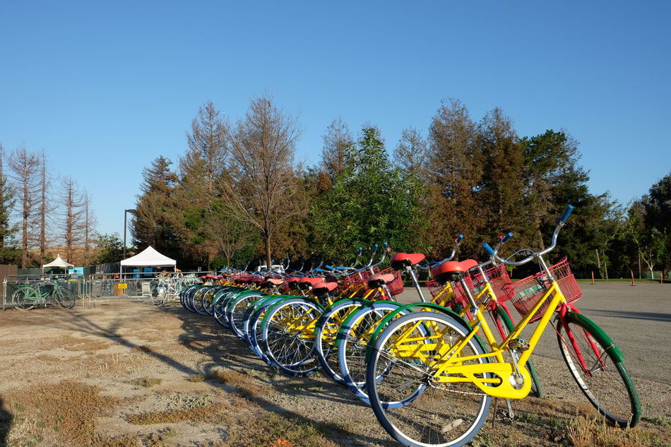 More wild bikes. Google I/O Clear Sky Tree Blue Sunlight Day Outdoors Stationary Parked Multi Colored Nature Sunny Landscape Tranquility Sky via Fotofall
