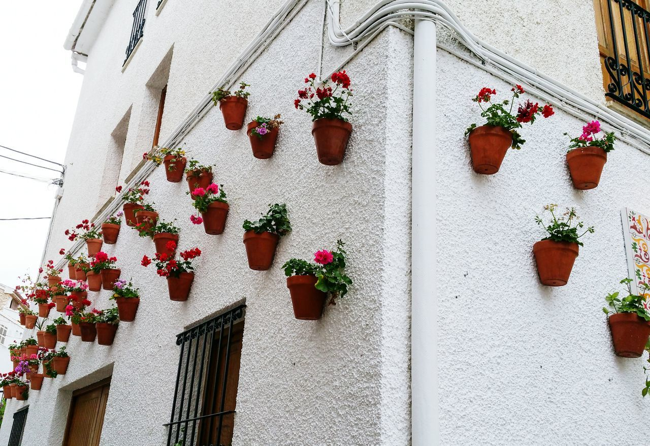Architecture Travel Mediterranean  Guadalest Spain Valencia, Spain Built Structure Red Flowerpots Wall White Building Exterior Outdoors Whitewashed Close-up No People Day Window Mediterranean  Architecture Village SPAIN House España Springtime Travel Destinations