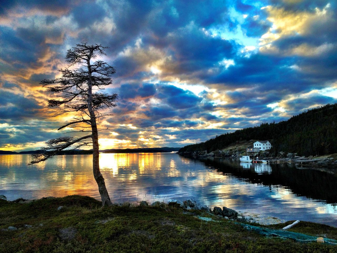 Perfect day Water Reflection Sky Nature Beauty In Nature Cloud - Sky Lake Scenics Tree Tranquil Scene Tranquility Sunset No People Idyllic Outdoors Clam Day Live For The Story