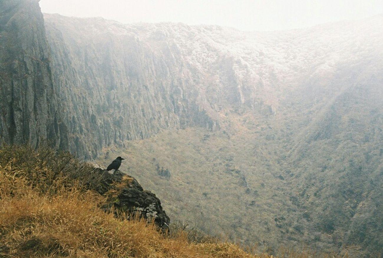 Jeju JEJU ISLAND  Hallasan Mt. Halla Nature