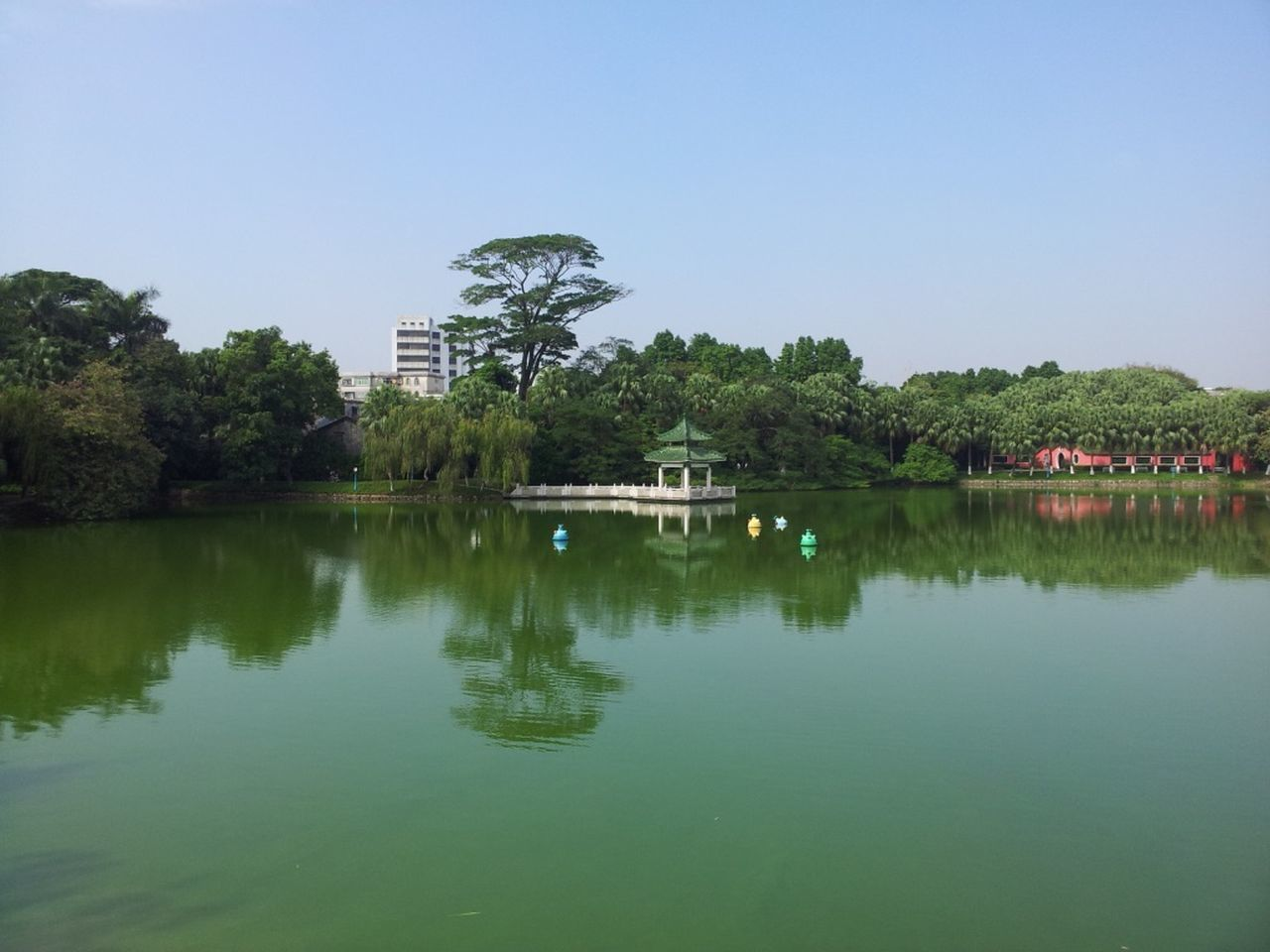 reflection, water, tree, waterfront, architecture, built structure, outdoors, building exterior, no people, tranquil scene, lake, day, nature, tranquility, beauty in nature, scenics, clear sky, sky
