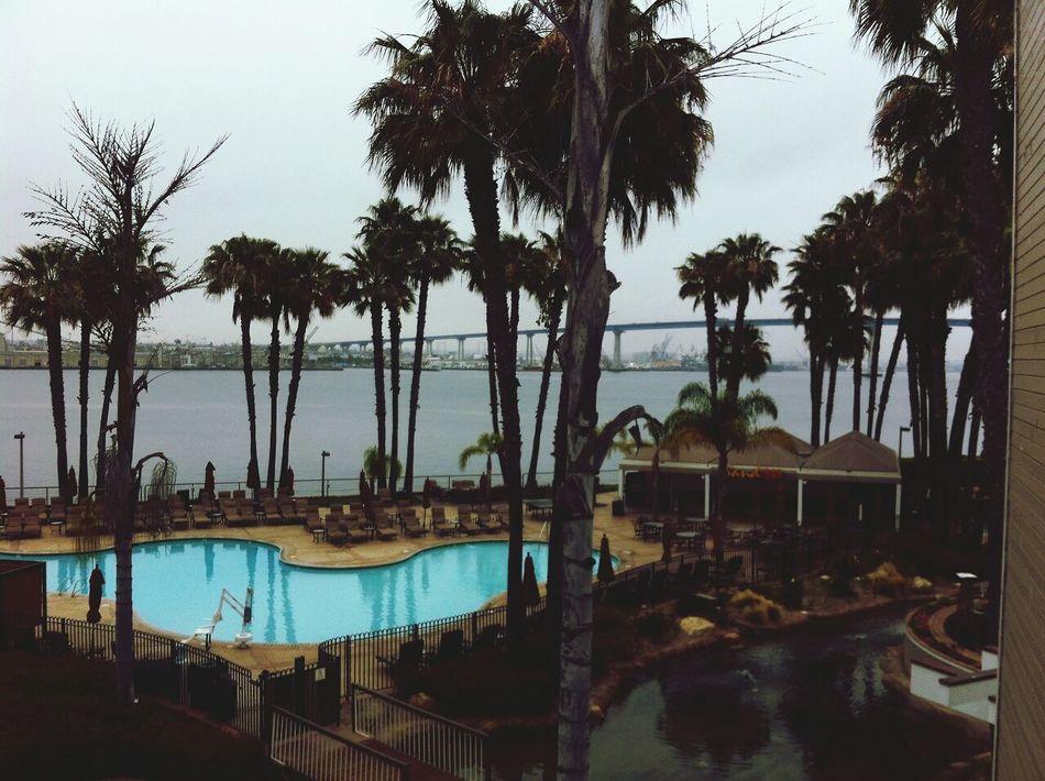 Livin' the good lyfe♥ Coronado Enjoying Life Hi!