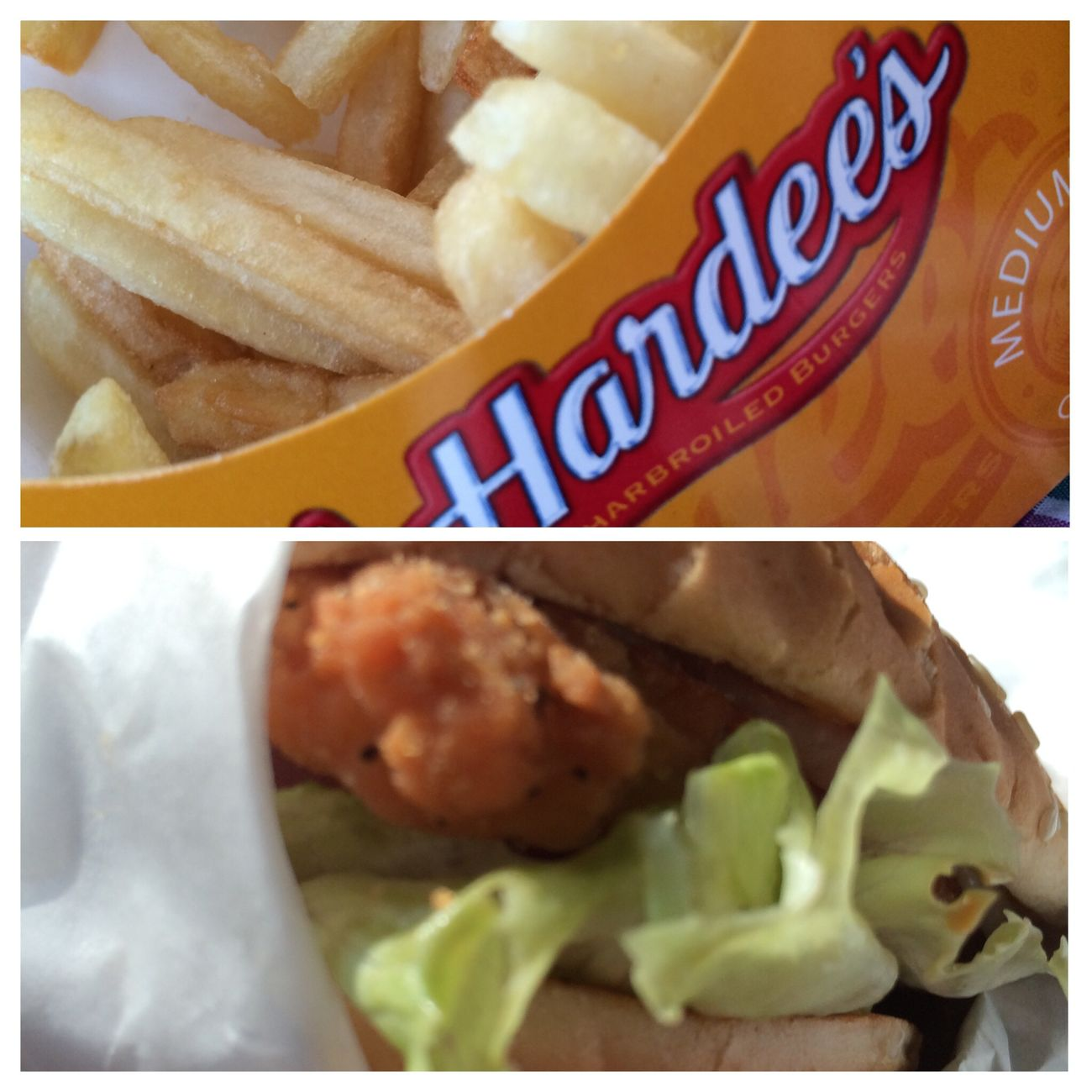 Hardees Food
