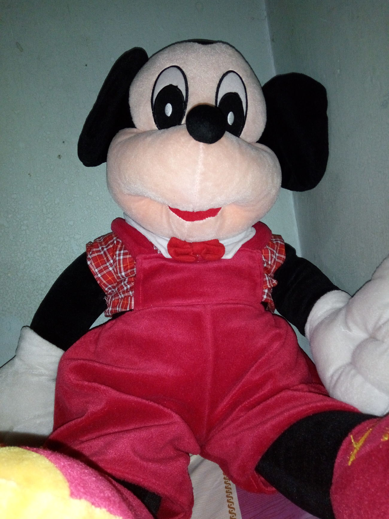 Mickey Mouse Otakcapek