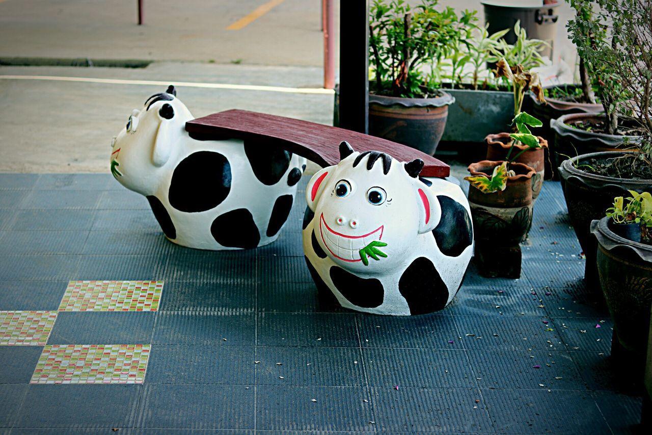Garden Chair Cow Cow Chair Animal Chair Cute Chairs Sitting Sitting Chair Garden Chair ArtWork Art Chair