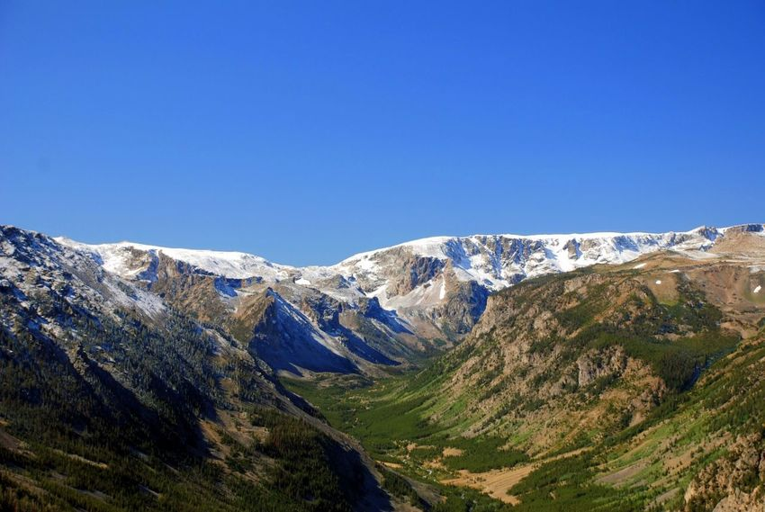 Beartooth Pass in Montana, USA. About an hour from where I live. EyeEm Nature Lover The Week On EyeEm Backgrounds Beartooth Beauty In Nature Blue Blue Sky Clear Sky Day Landscape Mountain Mountain Peak Mountain Range Mountains Nature No People Outdoors Scenics Sky Snow Snowy Snowy Mountains Summer Tree Valley Perspectives On Nature An Eye For Travel An Eye For Travel